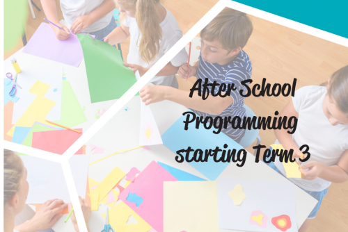 After School Programming term 3 returning